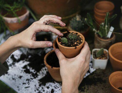 Responsible Gardener